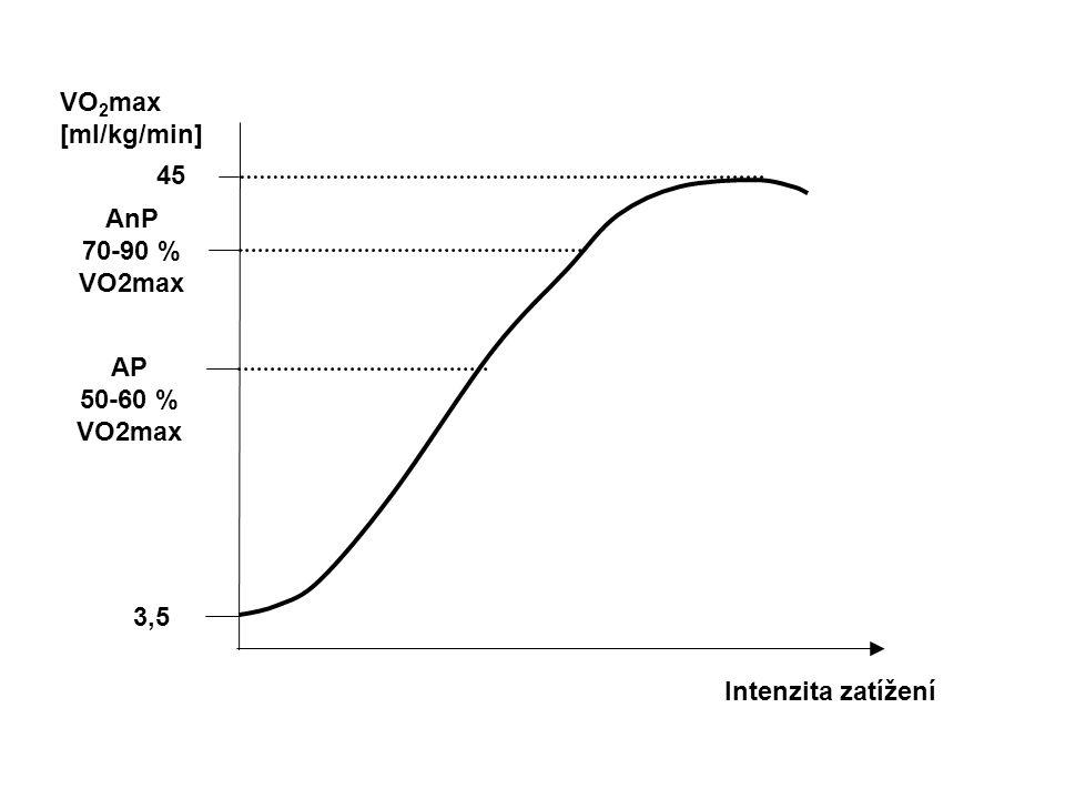 VO2max [ml/kg/min] 45 AnP 70-90 % VO2max AP 50-60 % VO2max 3,5 Intenzita zatížení